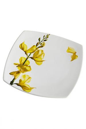 Тарелка десертная Ceramiche Viva. Цвет: мультиколор