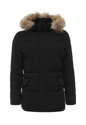 Куртка утепленная Warren Webber. Цвет: черный