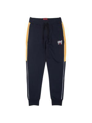 Спортивные брюки Aspen Polo Club. Цвет: синий