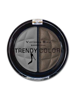 Тени для век TRENDY COLOR, тон 438 Victoria Shu. Цвет: серо-коричневый