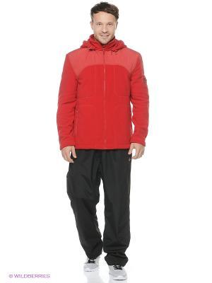 Куртки Shelter. Цвет: красный