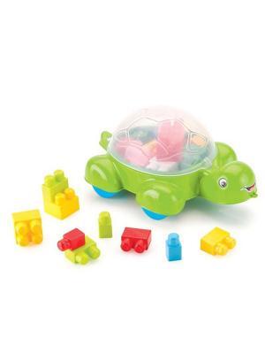 Черепаха-контейнер для конструктора Dolu.. Цвет: зеленый