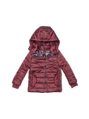Куртка Stilnyashka. Цвет: бордовый