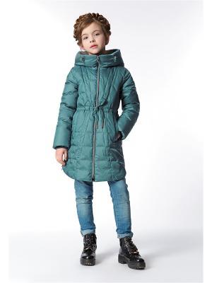 Пальто D`imma 31808/сине-зеленый