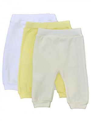 Брюки - 3 шт. АЙАС. Цвет: белый, молочный, желтый