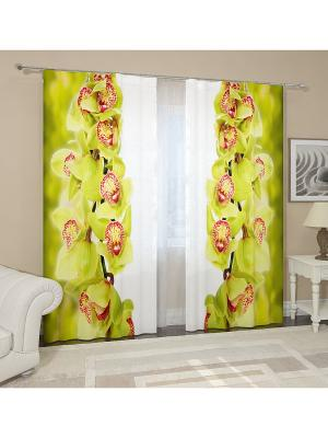 Фотошторы Ветки зеленой орхидеи Сирень. Цвет: желтый, белый, голубой, зеленый, красный, оранжевый, розовый, синий, фиолетовый, черный