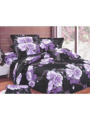 Комплект постельного белья 6 предметов HAMRAN. Цвет: черный, белый, фиолетовый