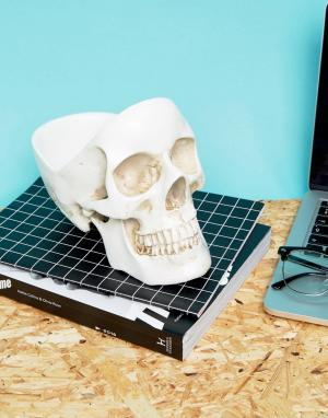 Suck UK Подставка в виде черепа. Цвет: мульти
