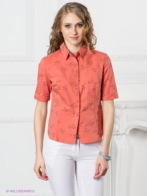 Блузка Neohit. Цвет: оранжевый