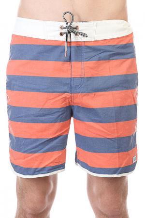 Шорты пляжные  Calypso Boardie Indigo Globe. Цвет: синий,оранжевый