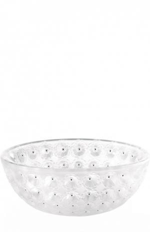 Ваза для фруктов Nemours Lalique. Цвет: бесцветный