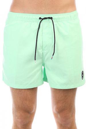 Шорты пляжные  Everydvl15 Green Ash Quiksilver. Цвет: зеленый