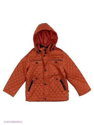 Куртка Пралеска. Цвет: терракотовый