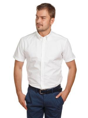 Рубашка Oxford McNeal. Цвет: белый