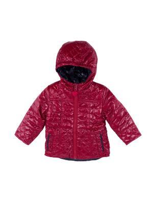 Куртка Coccodrillo. Цвет: красный
