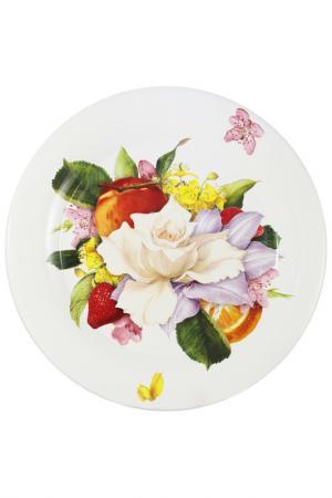 Тарелка обеденная Фреско Ceramiche Viva. Цвет: мультиколор