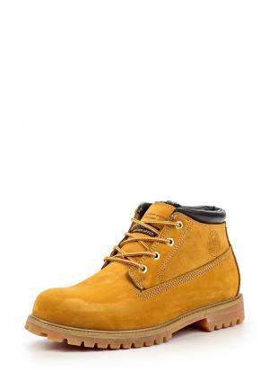 Ботинки Patrol. Цвет: оранжевый