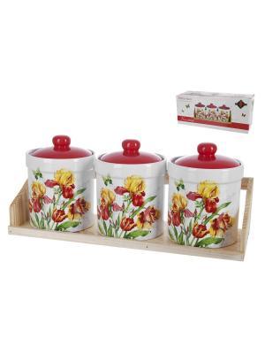 Банка для сыпучих продуктов Касатик, Polystar. Цвет: красный