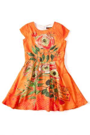 Платье I love to dream. Цвет: оранжевый