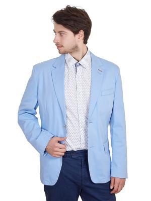 Пиджак ROY. Цвет: голубой