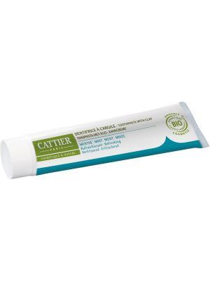 Cattier Зубная Паста Дентаржиль Мятная Освежающая, Туба 75 Мл. Цвет: бежевый, белый
