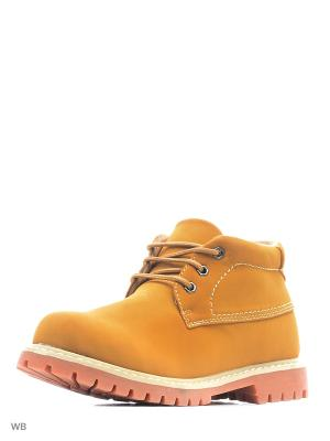 Ботинки Vitacci. Цвет: рыжий