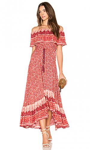 Вечернее платье samba Nightcap. Цвет: красный