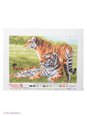 Рисунок на канве Бенгальские тигры Матренин Посад. Цвет: белый, коричневый, оливковый, серый