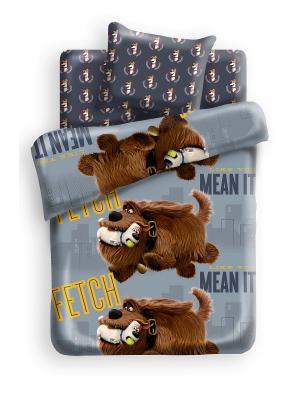 Комплект постельного белья 1,5 хлопок Макс и Дюк Тайная жизнь домашних животных. Цвет: антрацитовый, светло-серый, серый
