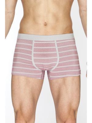 Трусы шорты TORRO. Цвет: серый, бледно-розовый