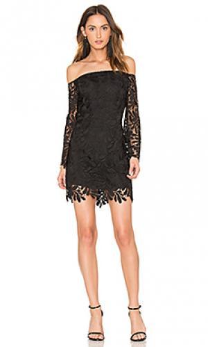 Кружевное платье flora Bardot. Цвет: черный