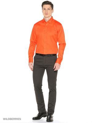 Рубашка Alex DANDY. Цвет: оранжевый