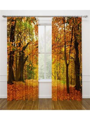 Фотошторы Осенний листопад Стильный дом. Цвет: оранжевый