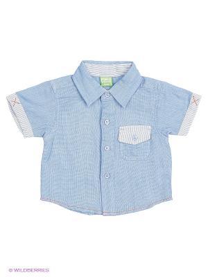 Рубашка Teidem. Цвет: голубой
