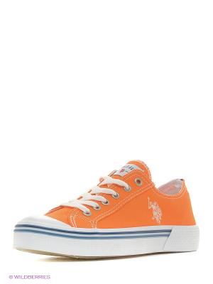 Кеды U.S. Polo Assn.. Цвет: оранжевый