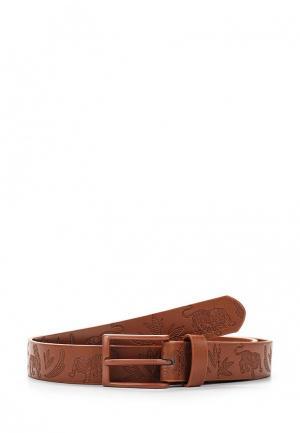 Ремень DC Shoes. Цвет: коричневый