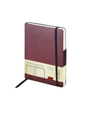 Ежедневник b6 на резинке zenitн (бордовый) Bruno Visconti. Цвет: бордовый