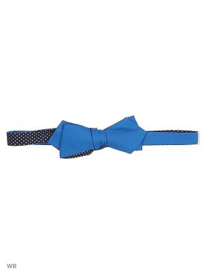 Бабочки Magnetiq. Цвет: синий