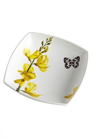 Тарелка суповая Ceramiche Viva. Цвет: мультиколор