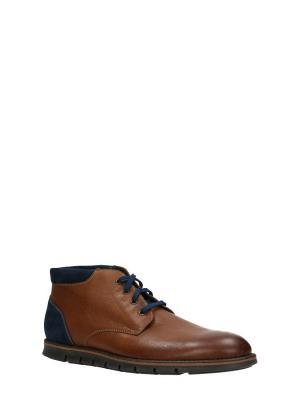 Ботинки GINO ROSSI. Цвет: коричневый
