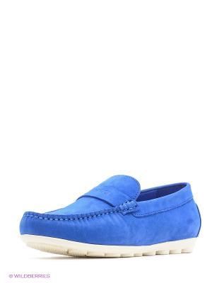 Мокасины Vitacci. Цвет: синий