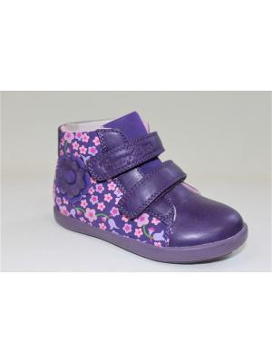 Ботинки Buddy dog. Цвет: фиолетовый