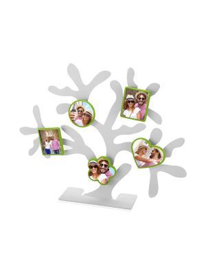 Набор магнитных фоторамок Дерево счастья. Цвет: зеленый