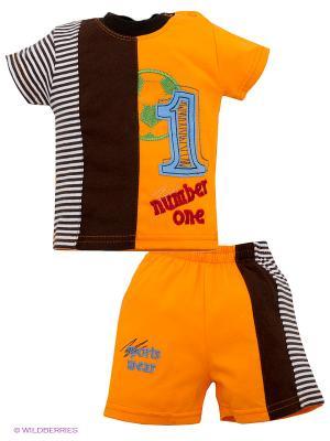 Комплект Volypok. Цвет: оранжевый, коричневый