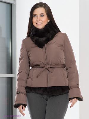 Куртка Acasta. Цвет: коричневый
