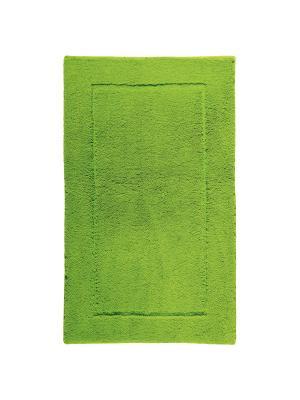 Коврик для ванной ACCENT 60x100 Aquanova. Цвет: светло-зеленый