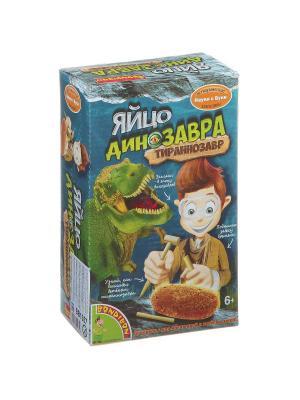 Французские опыты Науки с Буки, BONDIBON, Яйцо динозавра, арт.  510231 BONDIBON. Цвет: зеленый, коричневый