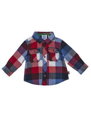 Рубашка CHICCO. Цвет: синий, красный