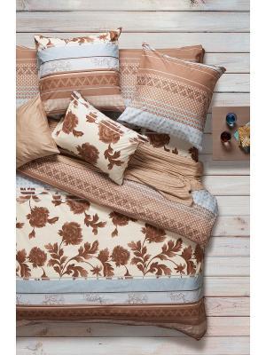 Постельное белье Евро, поплин Sova and Javoronok. Цвет: светло-коричневый, серо-голубой, темно-коричневый