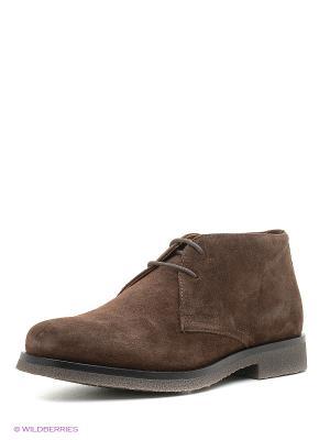 Ботинки GEOX. Цвет: светло-коричневый